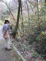 hosotanigawa