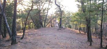 宮山墳墓群